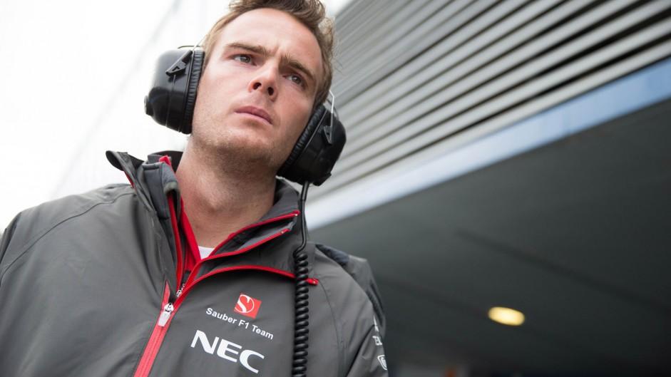 Giedo van der Garde, Sauber, Jerez, 2014