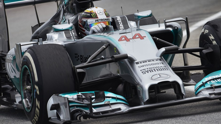 2014 Malaysian Grand Prix lap times and fastest laps