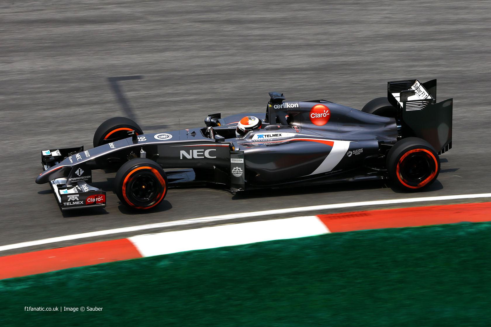 Adrian Sutil, Sauber, Sepang International Circuit, 2014
