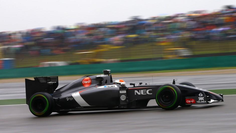 Adrian Sutil, Sauber, Shanghai International Circuit, 2014