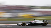 Jenson Button, McLaren, Hungaroring, 2014