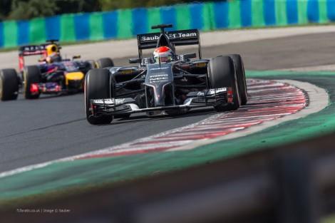 Adrian Sutil, Sauber, Hungaroring, 2014