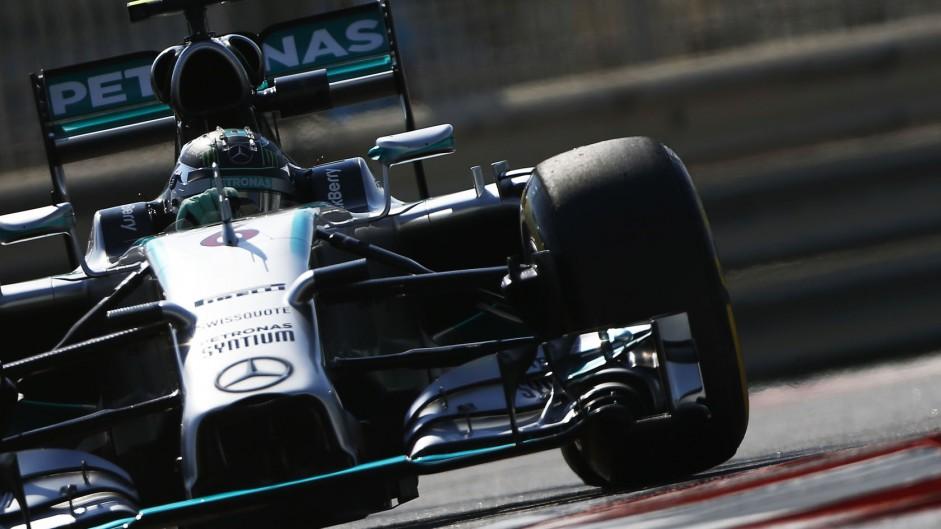 2014 Abu Dhabi Grand Prix grid