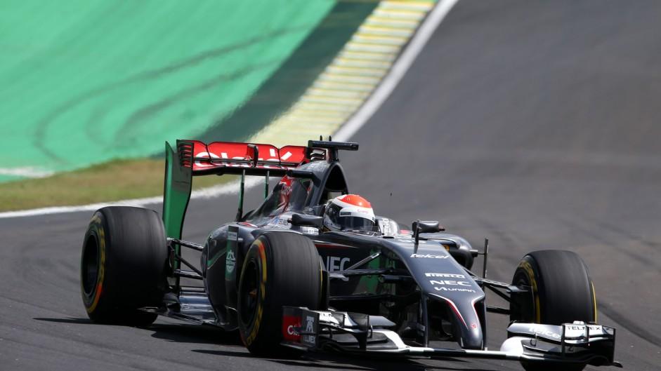Adrian Sutil, Sauber, Interlagos, 2014