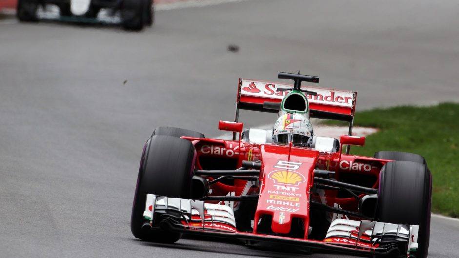 'Suicidal' seagulls a distraction for Vettel