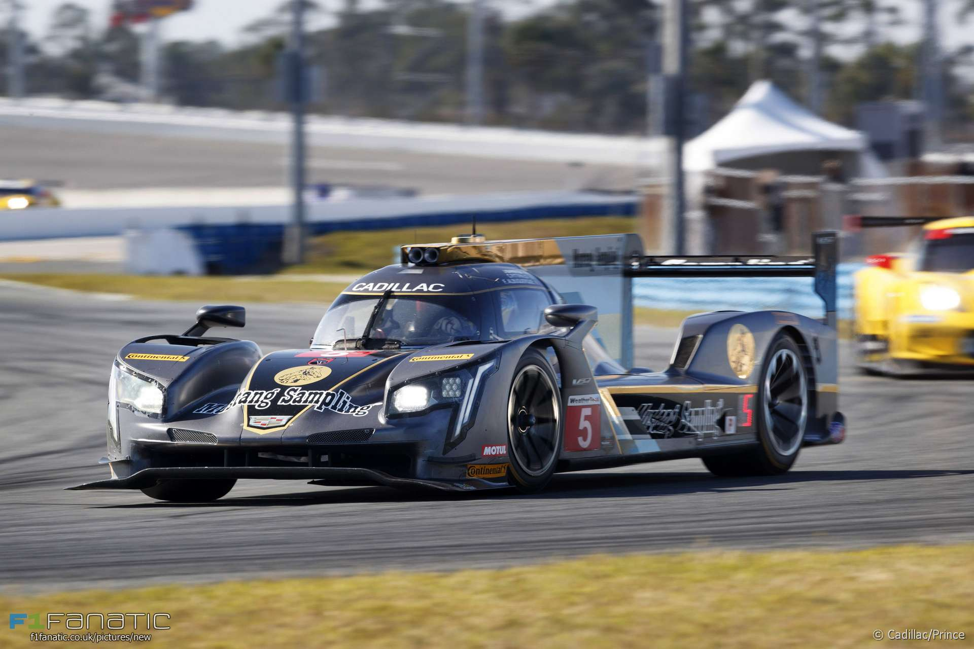 New distance record in Daytona 24 Hours but no joy for F1 pair