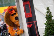 Max Verstappen fan, Red Bull, Spa-Francorchamps, 2019