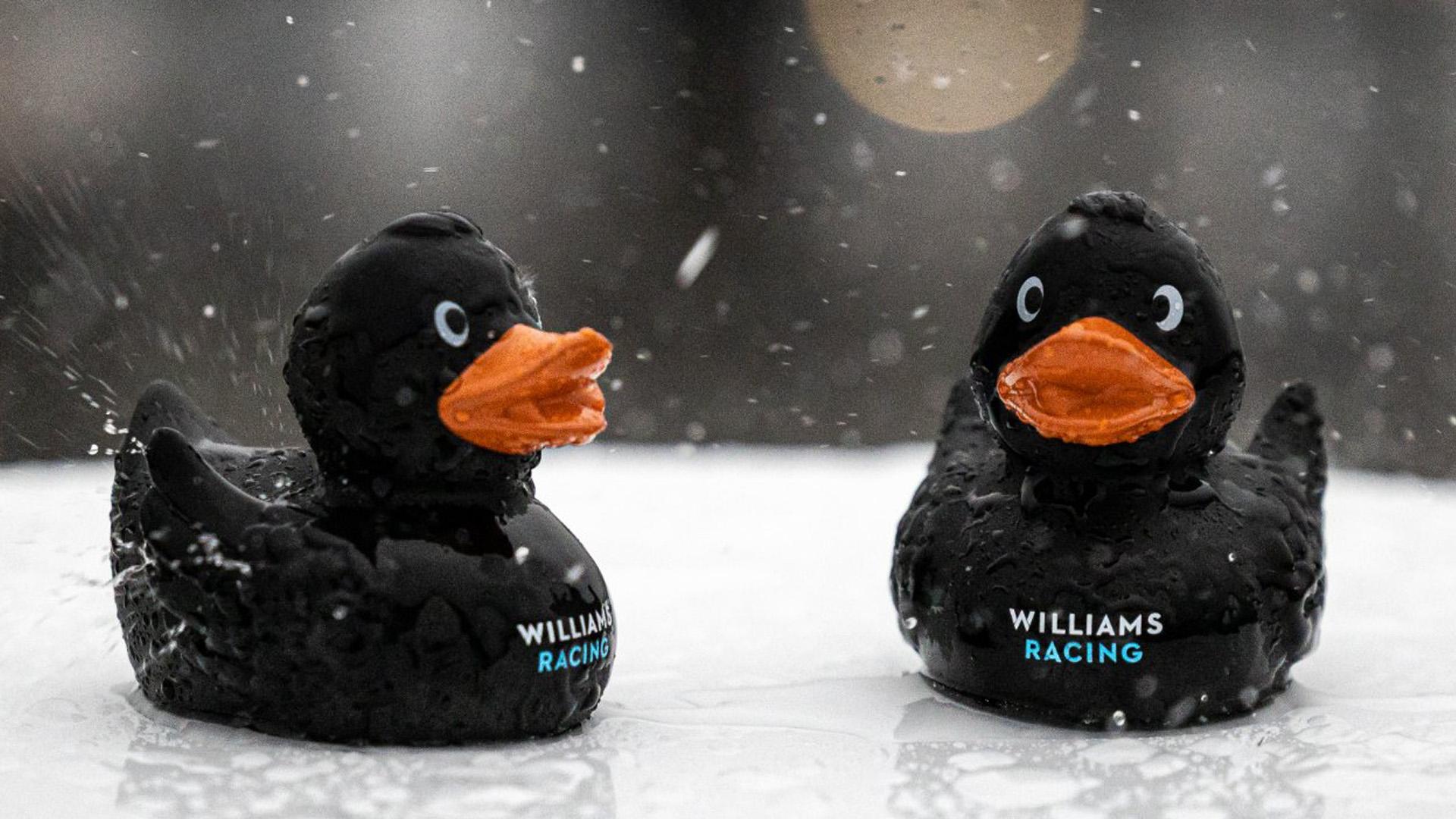 Williams-branded rubber bath toy ducks in the rain