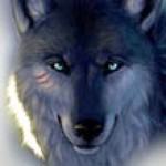 Profile photo of Loup Garou